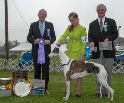 Winners_Dog_12123A017_2606_WEB_6X52012East
